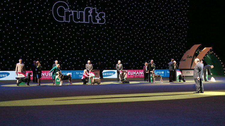 Crufts 2019 judges announced