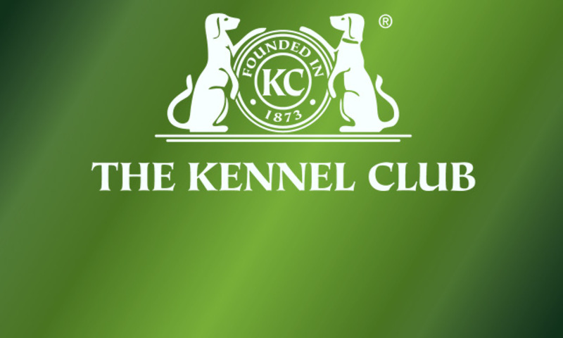 Kennel Gazette glitch as half of editorial group resigns