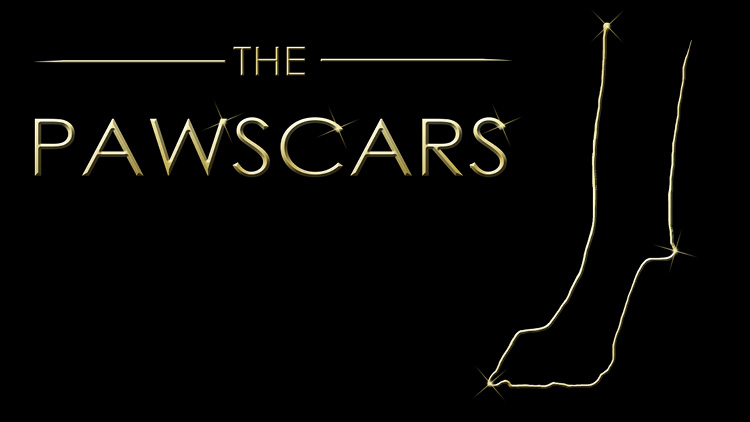 Pawscars 2016 Voting is open!