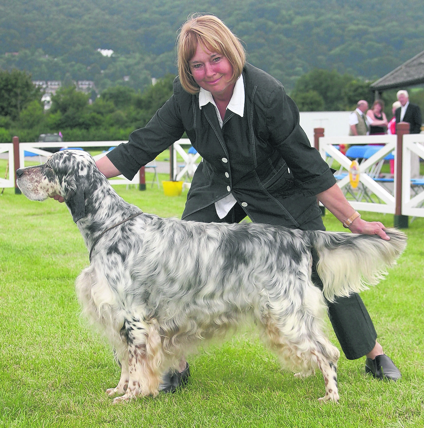Top stud dog - 2008