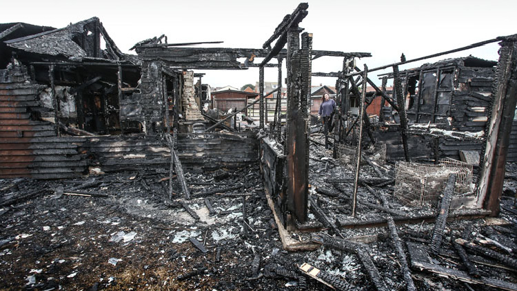 More than 20 dogs die in fire at breeder�s bungalow