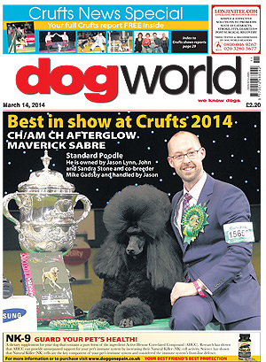 Best in show at Crufts 2014